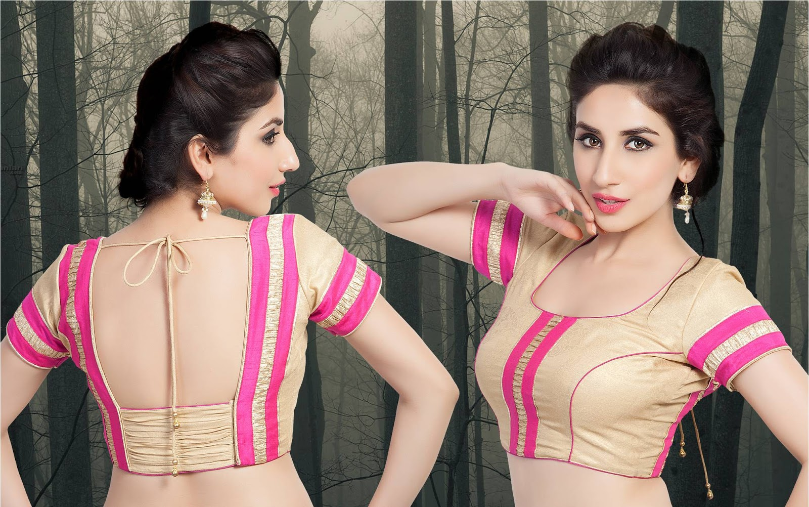 Blouse Designs Collection front and back - Blouse Designs