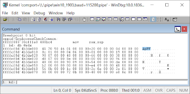 WinDBG window showing the hex output of the policy pointer which shows the on-disk policy.