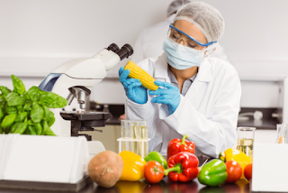 Gıda Teknolojisi nedir maaşları