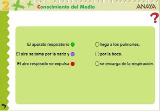 http://www.ceipjuanherreraalcausa.es/Recursosdidacticos/SEGUNDO/datos/03_cmedio/03_Recursos/actividades/01/act7.htm