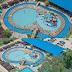 Central Park Zoo & Resort : Tiket Masuk, Atraksi Wisata, Wahana & Lokasi