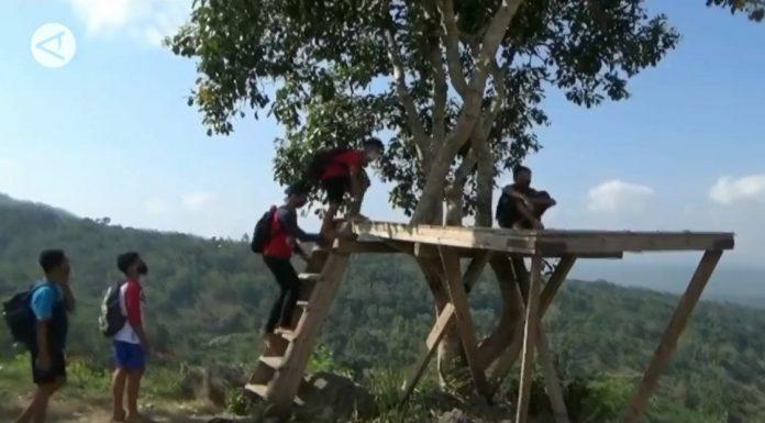 Realita 75 Tahun Kemerdekaan, Pak Ganjar Curhat Masih Banyak Anak-anak Naik Pohon Demi Dapatkan Sinyal Internet