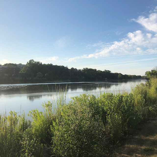 Meandering along the Fox River at RiverEdge Park.