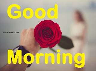romantic good morning rose images for girlfriend