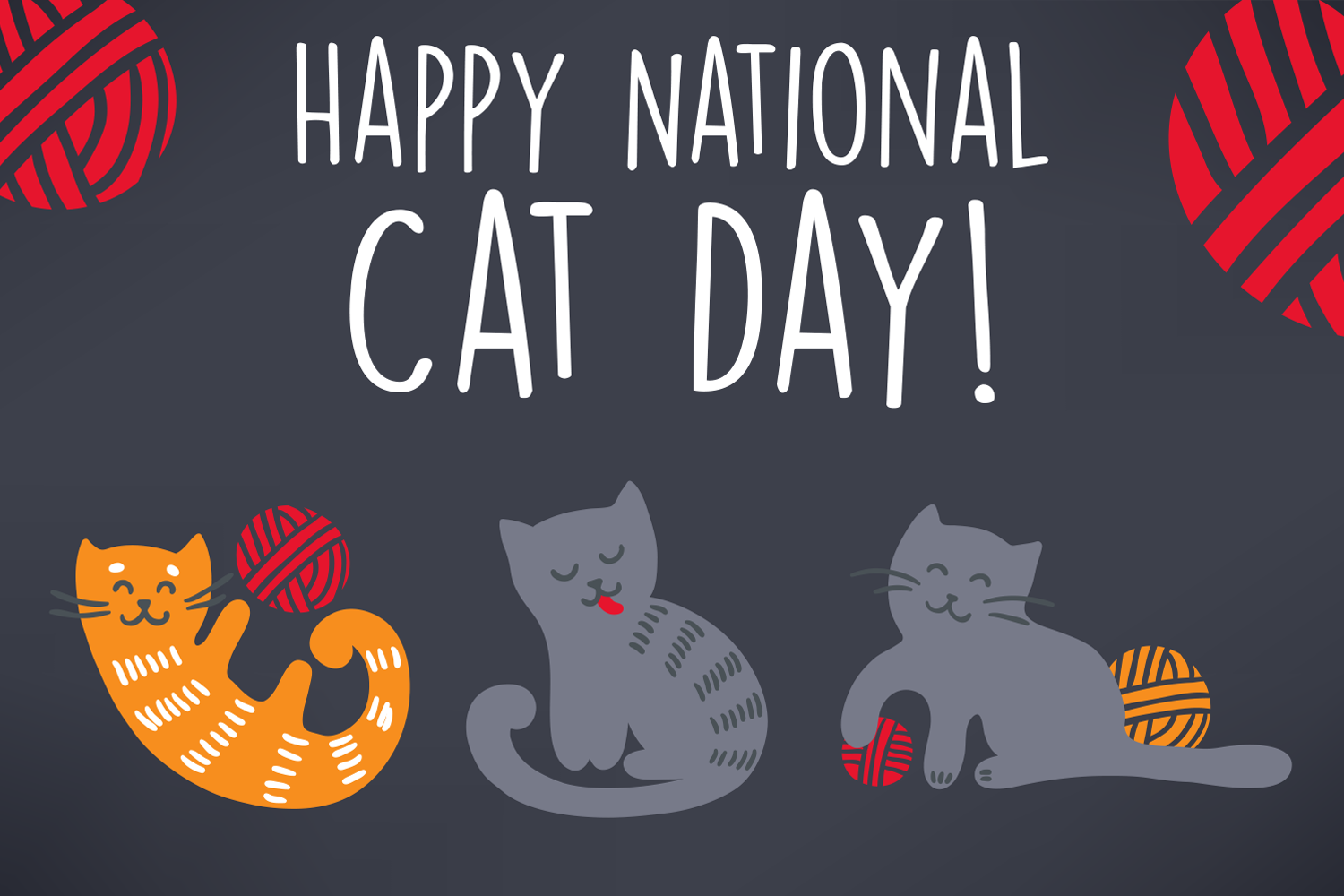 National Cat Day Wishes Pics