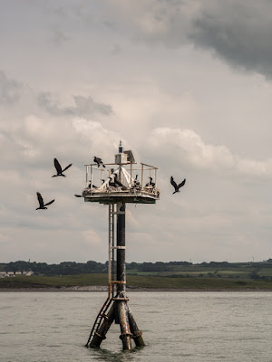 Photo of the navigation mark in the Solway Firth