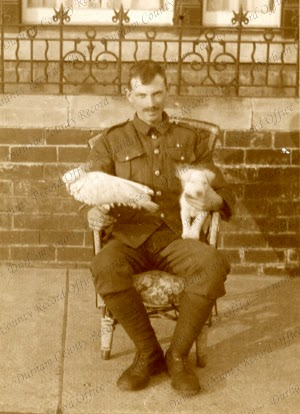 Private E. Corr, 4th Battalion, The Durham Light Infantry, with a cockatoo and a dog, c.1917 (D/DLI 7/35/1(30))