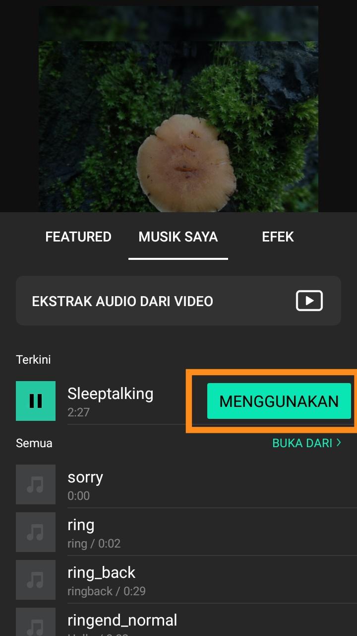 cara membuat video di aplikasi inshot