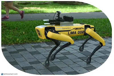 Coronavirus: Robot Dog Has Spotted Doing Patrol In Park Of The Singapore