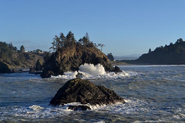 splashing waves on the tree topped island