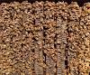 87 κιλά μέλι ανά κυψέλη Χωρίς τροφοδοσία: Η τεχνική του Πάτερ Δαβίδ από το Άγιο όρος...