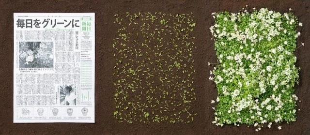 503: Toprağa Gömülünce Filizlenen Gazete