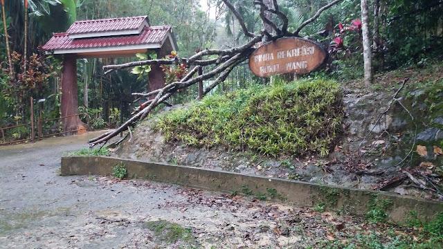 Hutan Lipur Bukit Wang