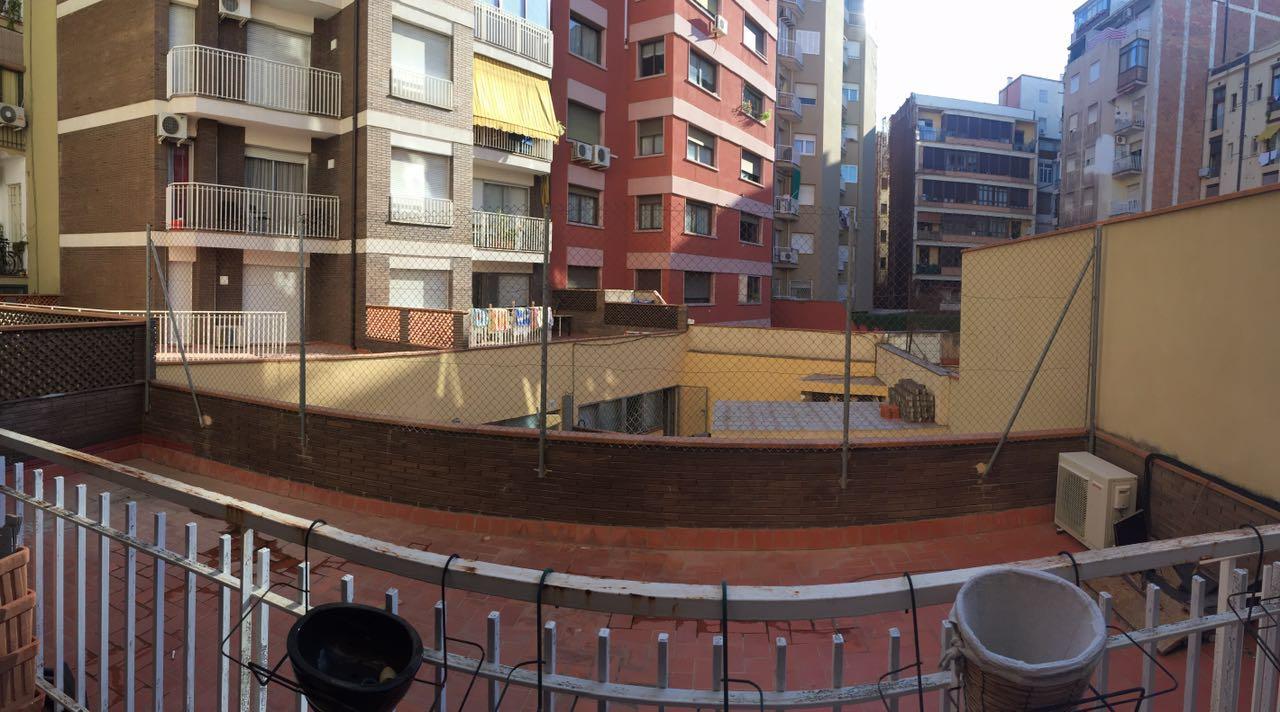 Serviciosdejardineriabasica antes y despu s colocaci n for Jardineria barata barcelona