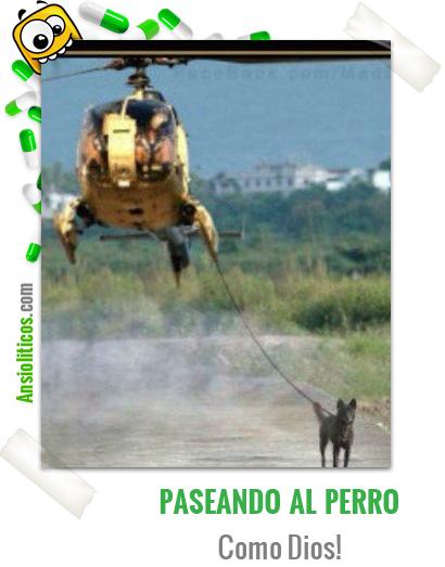 Chiste de Perros: Paseando desde el Helicóptero
