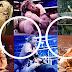 Top 100: Peleas Que Ver Antes De Morir - Versión WWE #100