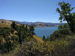 Calaveras Reservoir and the hills beyond, with sticky monkeyflower blooming in the foreground, Calaveras Road near Milpitas, California