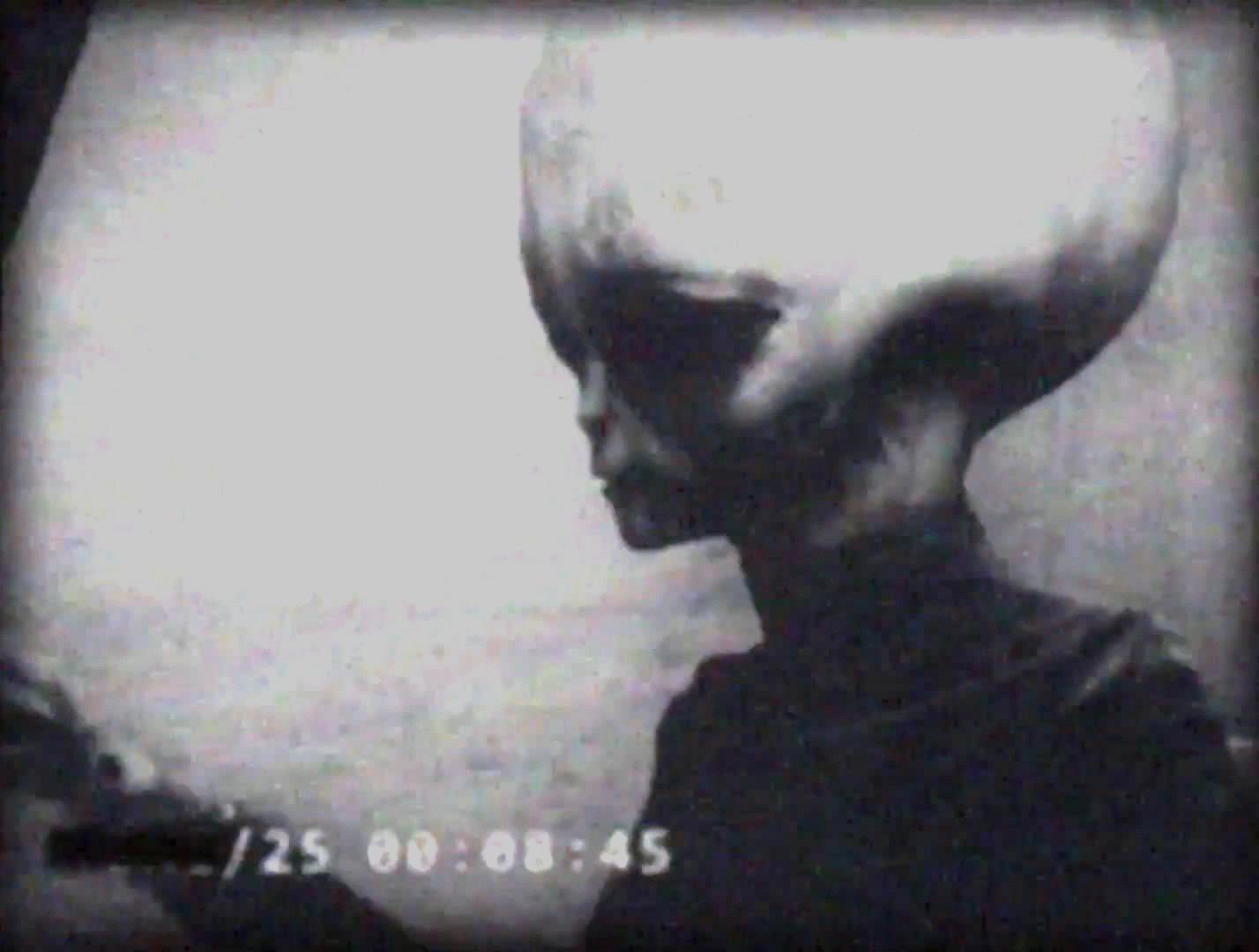 GlobaLove Think Tank: alien grey extraterrestrial zeta