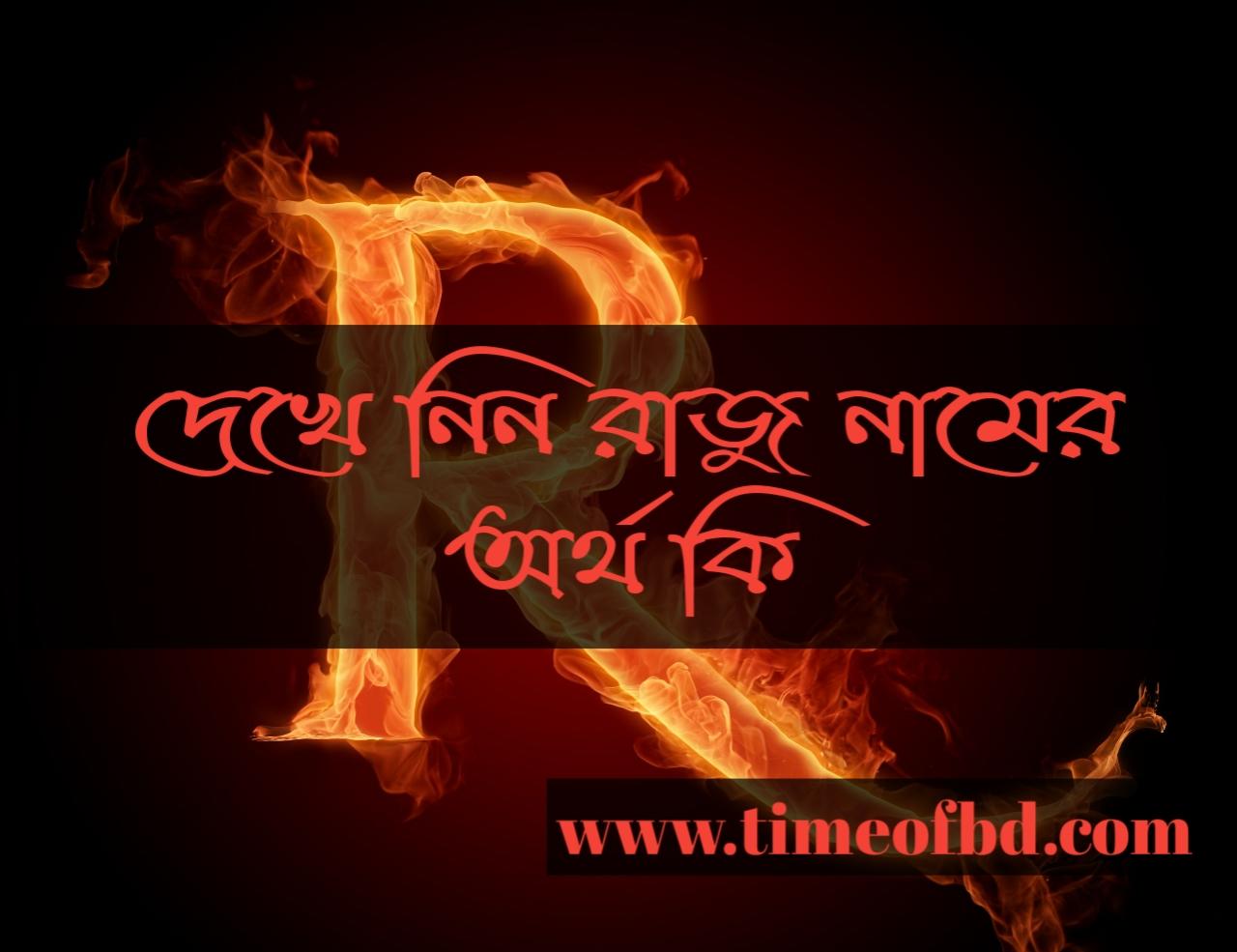 Raju name meaning in Bengali, রাজু নামের অর্থ কি, রাজু নামের বাংলা অর্থ কি, রাজু নামের ইসলামিক অর্থ কি,
