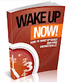 Free eBook Wake up Now