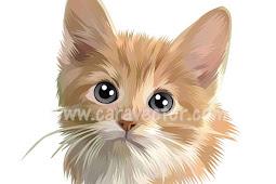 Tutorial membuat pet vector (kucing) dengan mudah di Infinite Design