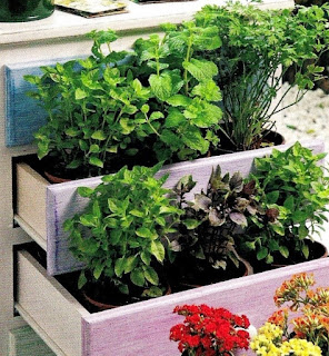 Cômoda usada para acomodar plantas no jardim