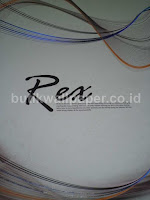 http://www.butikwallpaper.com/2013/05/wallpaper-rex.html