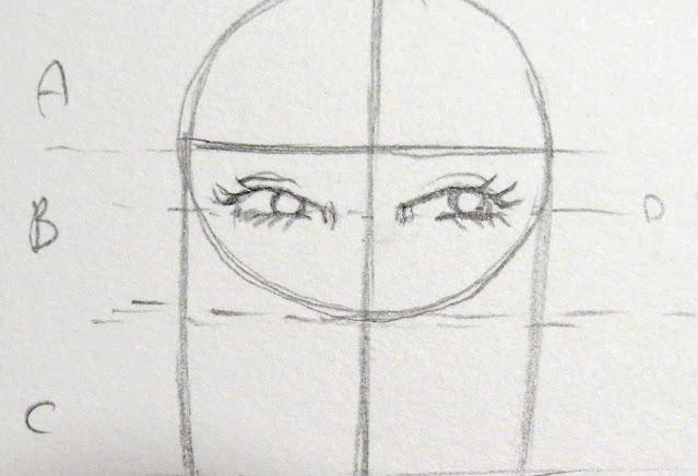 Dibujo del párpado inferior del ojo, cuenca y pestañas