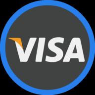 visa icon outline