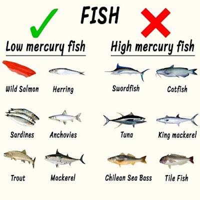 ikan dengan merkuri makanan untuk ibu mengandung