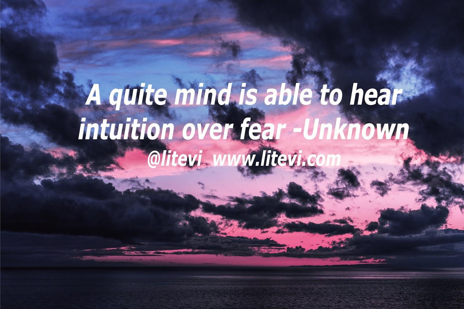 LiteVi: Quiet Your Mind