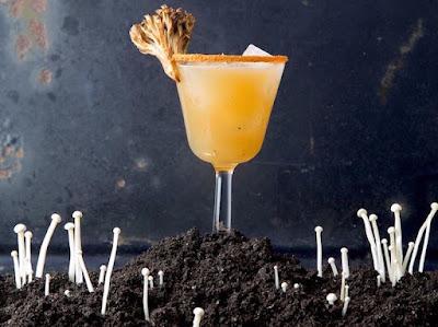 Mushroom Based Drinks