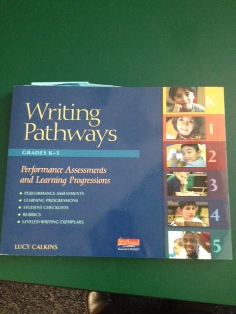 Scu pathways essay writer