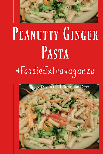 Gluten Free Gingery Peanut Pasta pin