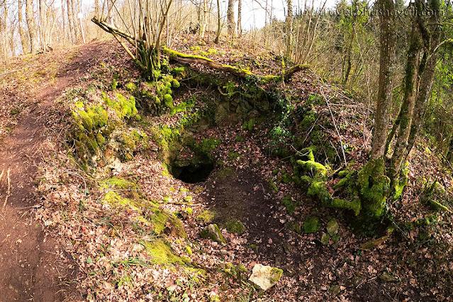 Les Fond des Vaulx Marche en Famenne Hiking in Ardennes with kids