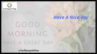 Good Morning Images   good morning rose image, good morning images in telugu, love good morning image