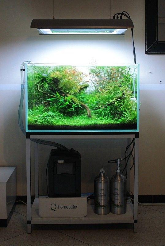 Lọc thùng thường được kết hợp với in out thủy tinh cho hồ thủy sinh