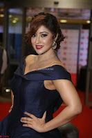 Payal Ghosh aka Harika in Dark Blue Deep Neck Sleeveless Gown at 64th Jio Filmfare Awards South 2017 ~  Exclusive 064.JPG