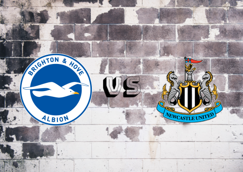 Brighton & Hove Albion vs Newcastle United  Resumen