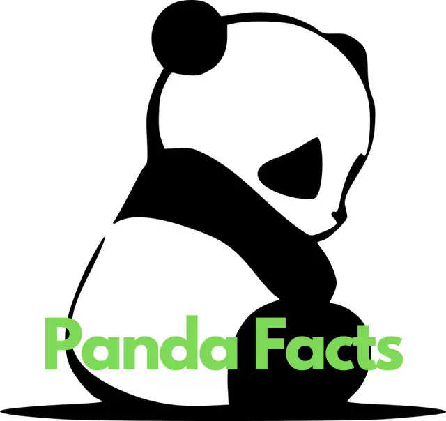 90 Amazing Facts About Panda In Hindi