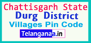 Durg District Pin Codes in Chattisgarh State