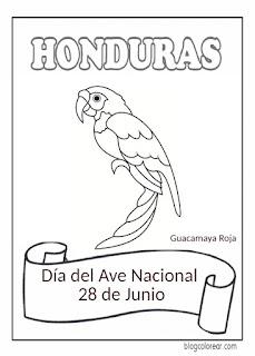 colorear Día del Ave Nacional de Honduras,