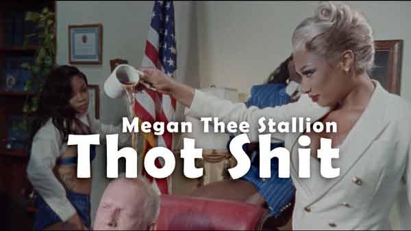 megan thee stallion thot shit