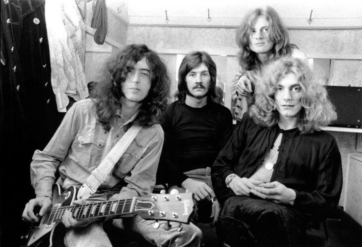 Nueva especie de rana nombrada en honor a Led Zeppelin