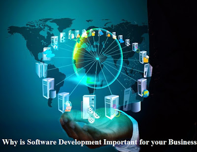 Why is Software Development Important for your Business