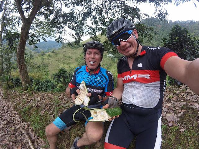 turismo en microbus con bicicleta
