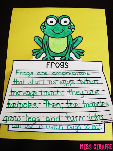 Frogs writing craft activity that is no prep and perfect for young kids learning about the life cycle of a frog