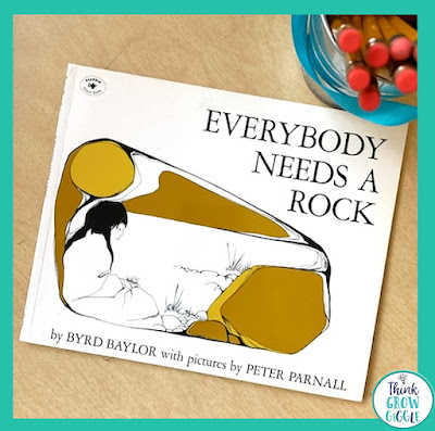 everybody needs a rock picture book for testing days for children