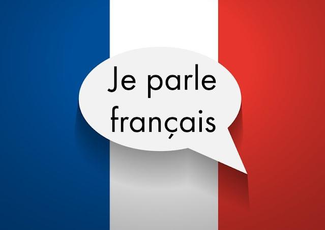 اللغة الفرنسية - تعلم اللغة الفرنسية بدون استاذ - كتب لتعلم اللغة الفرنسية pdf