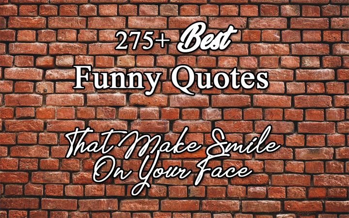 Quotes Funny Quotes About Love